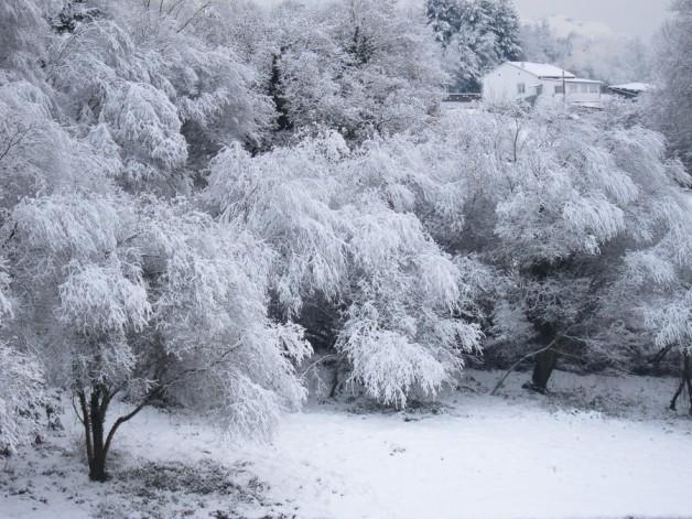 Oviedo nevado